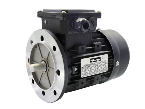 MR_Rotary_Induction_Motor